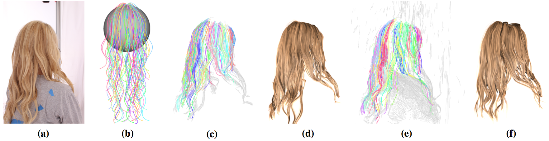 robust hair capture using simulated examples